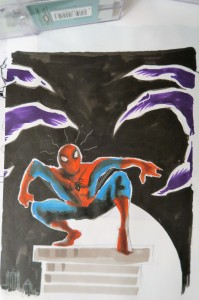 spidey-photo72